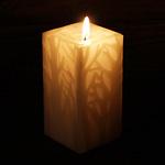 """nuri candle キャンドル作家 福間乃梨子 手作りキャンドル""""エルムの森で""""Sサイズ [NU-PR-ELM01-S]"""